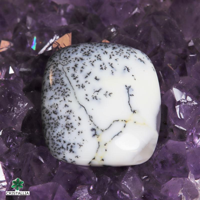 Cabochon Opale Dendritique